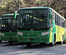 dina-220x185